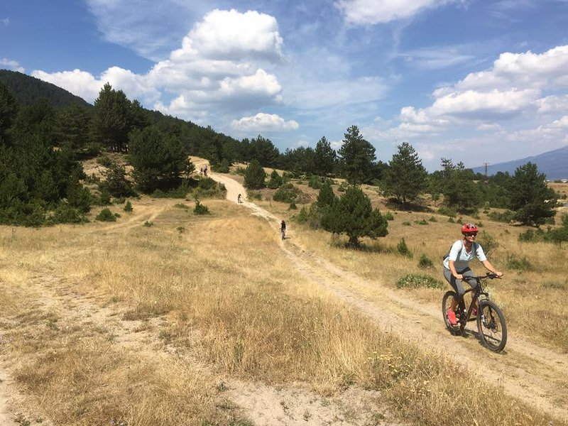 Local Mountain biking trials
