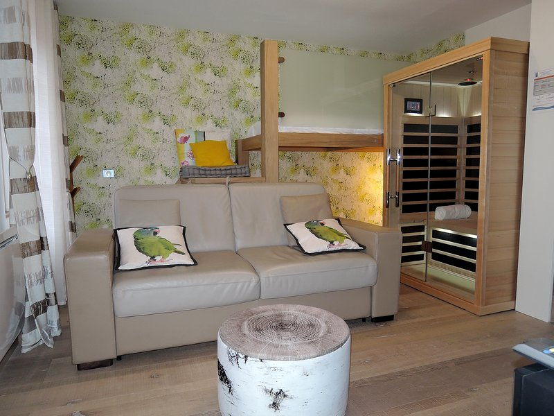 Living room, sauna and bunk beds