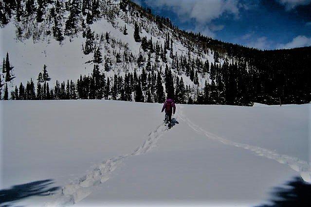 Hay muchas rutas de raquetas de nieve en el pico 7