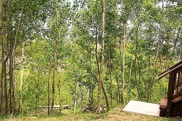 Las escaleras que conducen hacia abajo en el arbolado forestal nacional. Aspen, pino y la vida silvestre.
