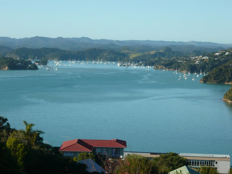 Million Dollar views of Opua Marina