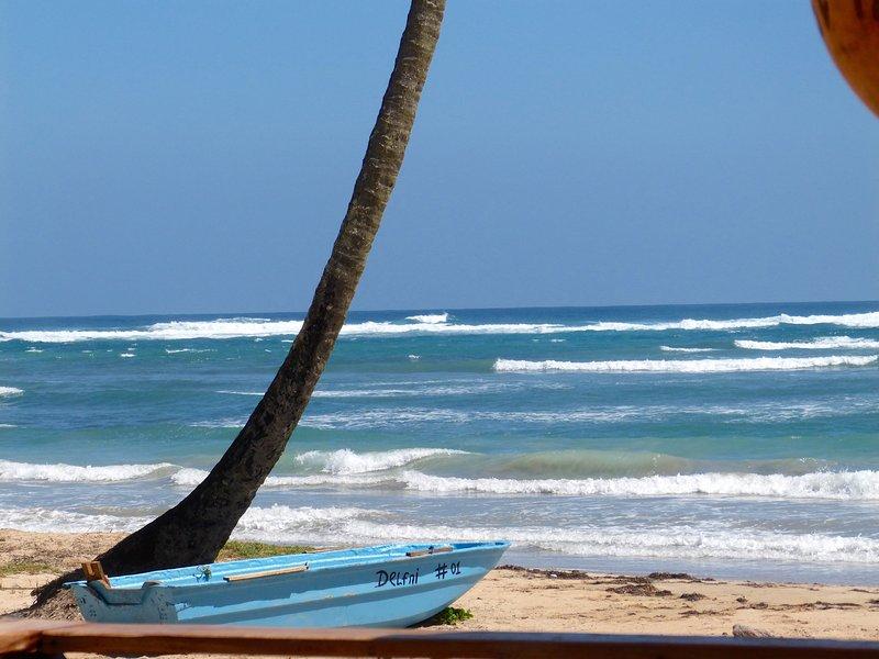 dream beaches nearby.