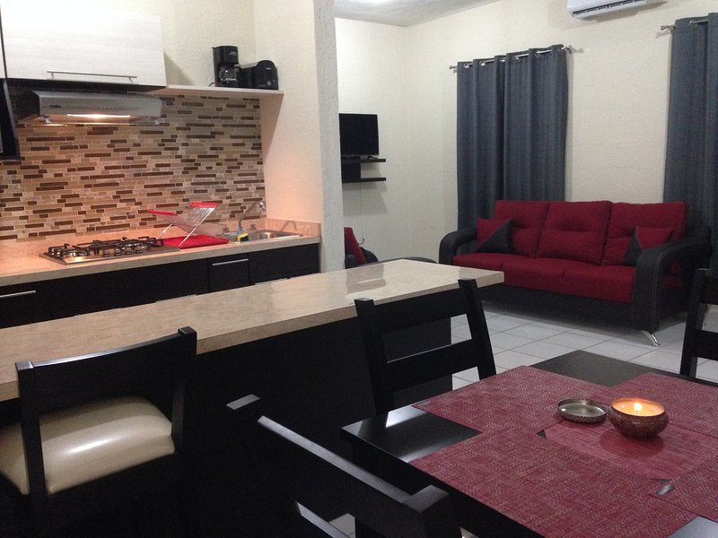 Beautiful and modern apartment fully furnished.