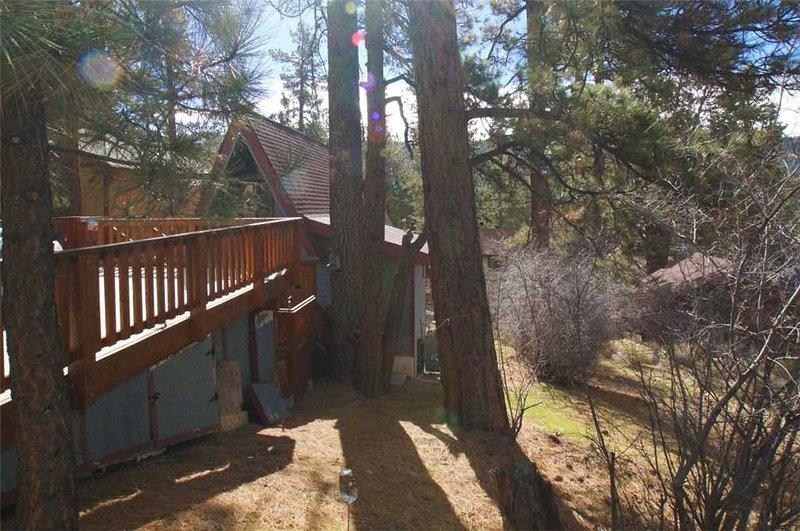 Gran, träd, Shack, Building, Cottage