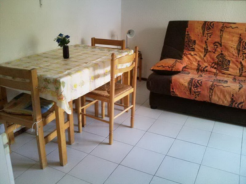 Nice studio - 150 m from the slopes, holiday rental in Vénosc