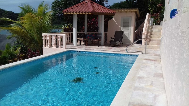 NEW 30' POOL- Snorkel. Kayak. Dive. FIVE STAR AWARD WINNER!, vacation rental in Politilly Bight