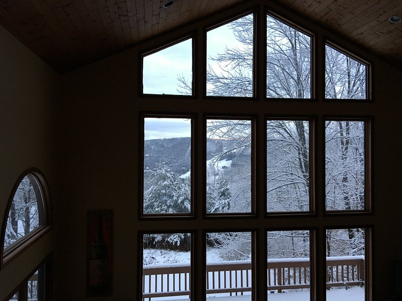 Stunning views of Enchanted Mountain and ski slopes, Ferienwohnung in Little Valley