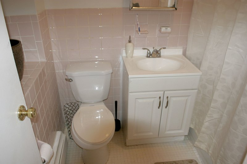 SECOND BATHROOM IN THE HOUSE WITH DESIGNER SHOWER CURTAINS, SOAP, SHAMPOO, PAPER, TOOTH PASTE