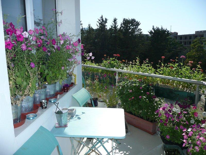 Profitez de votre café sur le balcon - avec une vue absolument remarquables