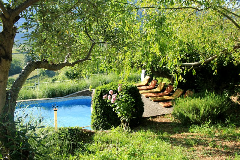 Vila område med fikonträd skugga, ett nöje.