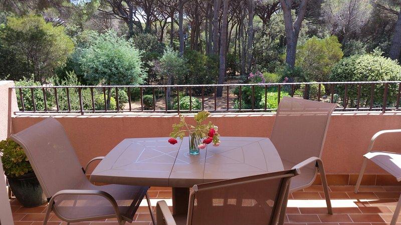 St Maxime.Apt.2Pièces, terrasse sud au calme.4 pers.150m plages, piscine,parking, holiday rental in Sainte-Maxime