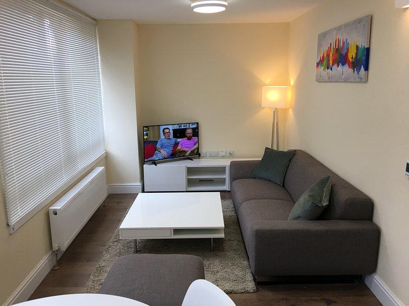 Single  Bedroom Apartment, location de vacances à Slough