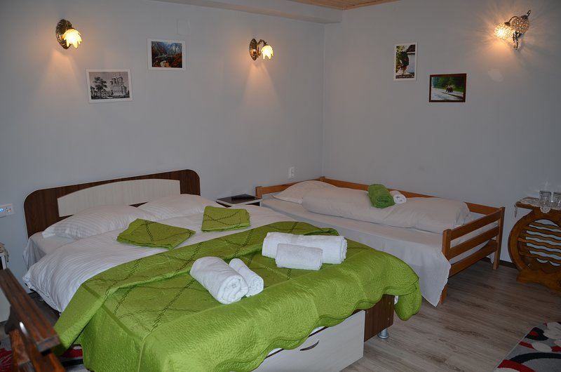 Belvedere la Cristina room for 2-3 people, holiday rental in Bradetu