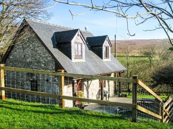 BLAENDYFFRYN FACH, off the beaten track, woodburner, WiFi, near Llanllwni, Ref, vacation rental in Llanybydder