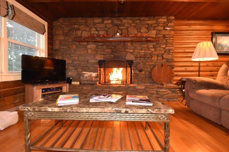 Log Cabin Wood Burning Fireplace Hot Tub Pool Tripadvisor