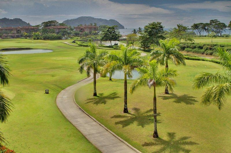 Golf Course,Grassland,Palm Tree,Tree,Hotel
