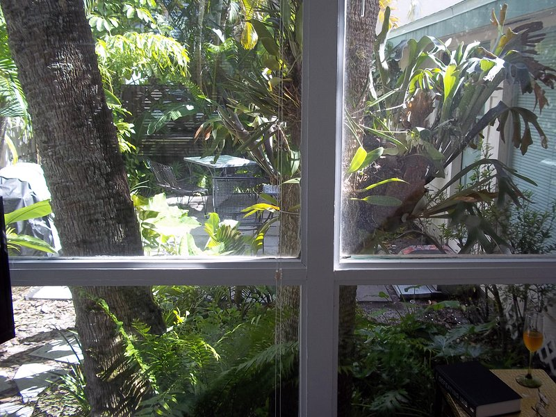 Looking out to the private garden from the sun room.