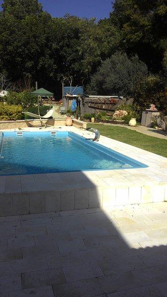 Una piscina increíble rodeado de un hermoso jardín de ancho