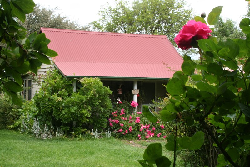 Poppy's Cottage B&B  Award winning, Charming bed and breakfast close to Armidale, holiday rental in Armidale