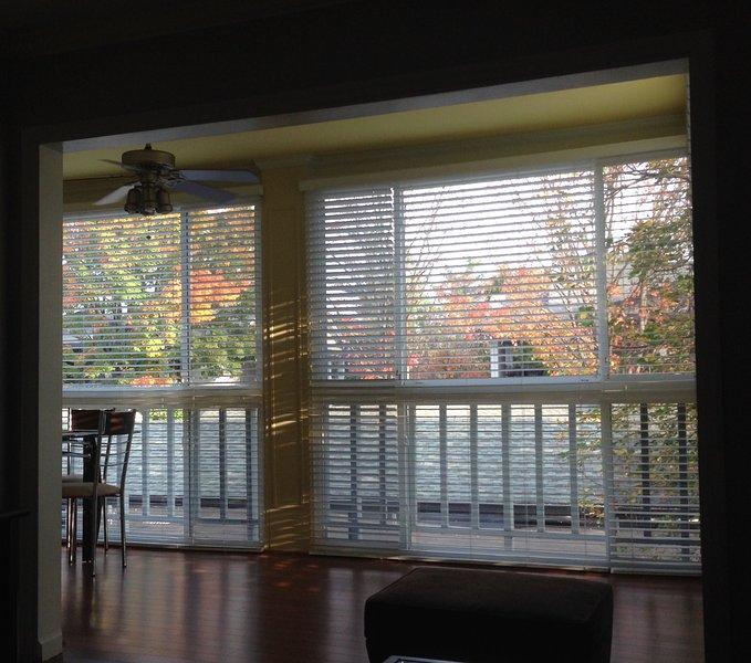 Vue agréable d'arbres à travers de grandes fenêtres. Les petites fenêtres latérales grillagées ouvrent pour l'air frais.