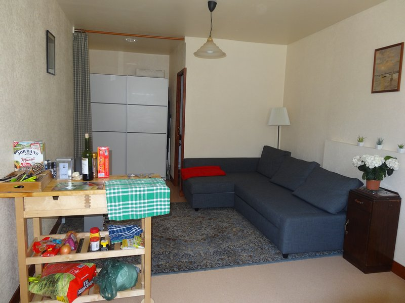 STUDIO ST JACQUES, holiday rental in Masleon