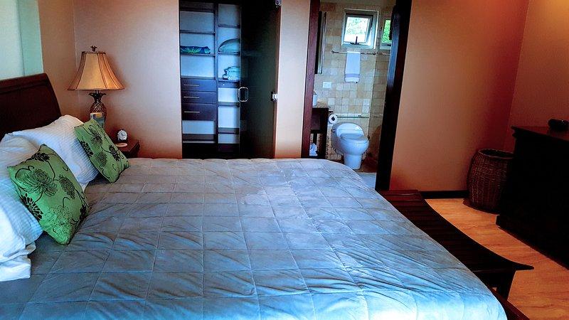 Master bedroom with walk-in closet and en-suite bathroom.