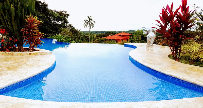 Infinity pool overlooking ocean and jungle.