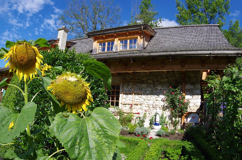 Ferienwohnung am Rafting Camp Palfau - Feriengut Moarhof, holiday rental in Sankt Gallen