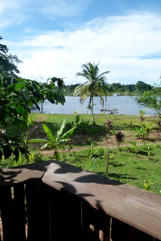 Vista desde uno de los balcones de la casa del árbol.
