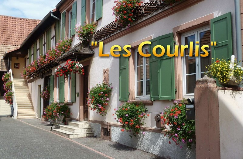 Appartement 'Les Courlis', holiday rental in Ohlungen