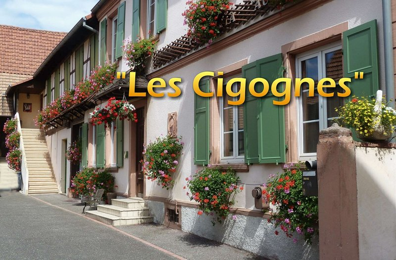 Les Cigognes, holiday rental in Ohlungen