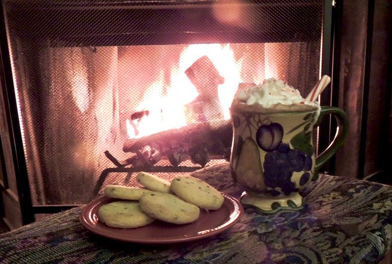 In the winter, make yourself some hot coco and cookies to sip before the fire!