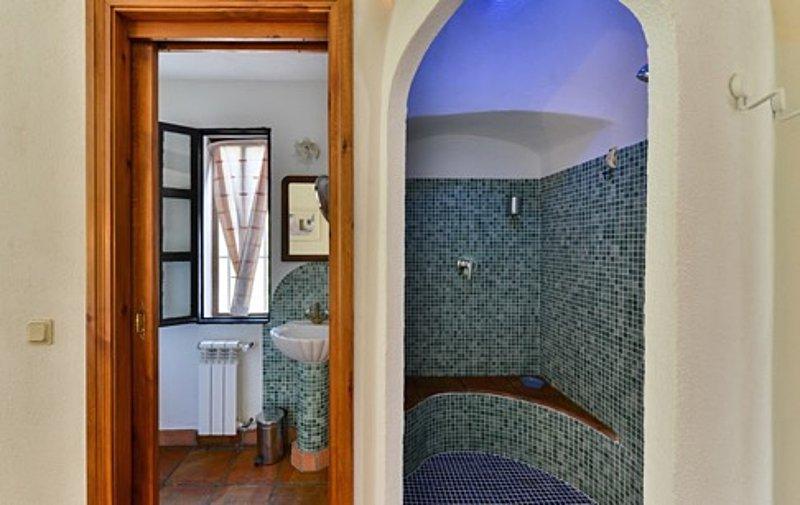 Belle mosaïque carrelée de plain-pied dans les douches avec un éclairage d'ambiance réglable.