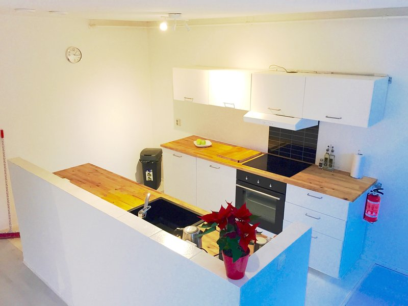 kitchen with dishwasher, oven , induction plates, washing machine for clothing, dryer all amenities