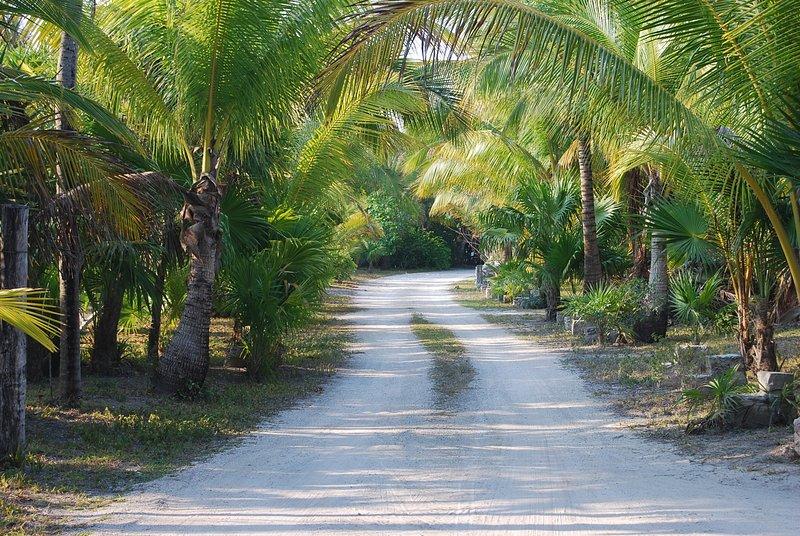 Den privata väg Rancho San Eric, vilket leder till Casa Dunia.
