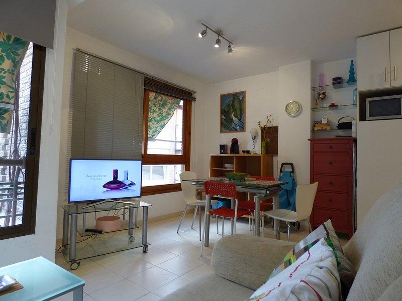 louer appartement Alicante CENTRE VILLE,