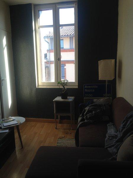 Superbe appartement au centre de Toulouse, holiday rental in Villeneuve-Tolosane