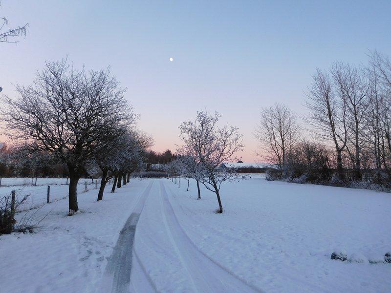 Zonsopgang in de winter