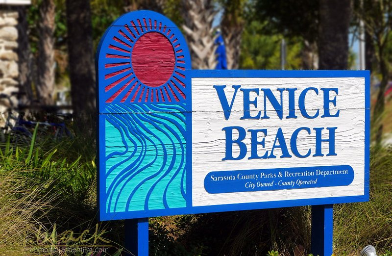 Bike to Venice Beach