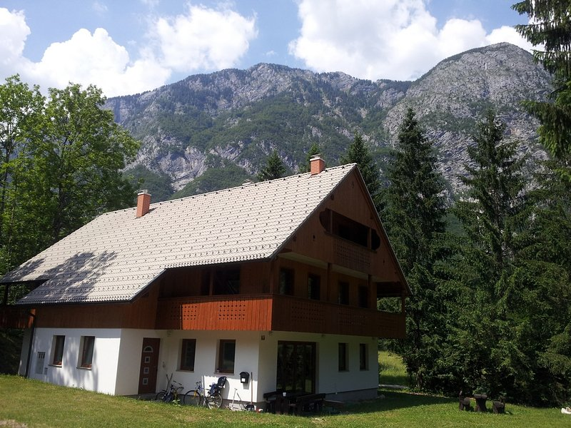 Apartments Lake Bohinj, holiday rental in Bohinjsko Jezero