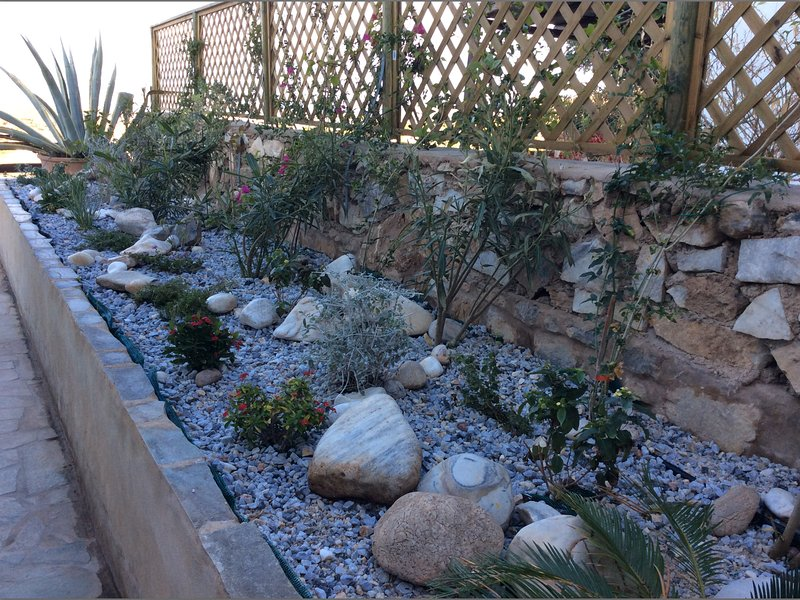 terrasse jardin méditerranéen