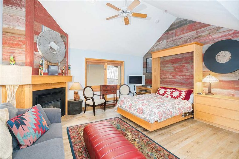Le Chamonix B, vacation rental in Telluride