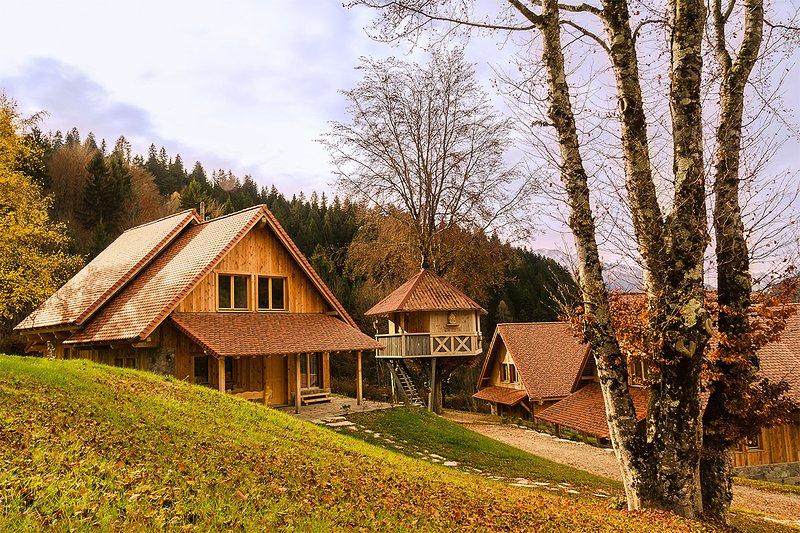 Dolomites Village house on the tree