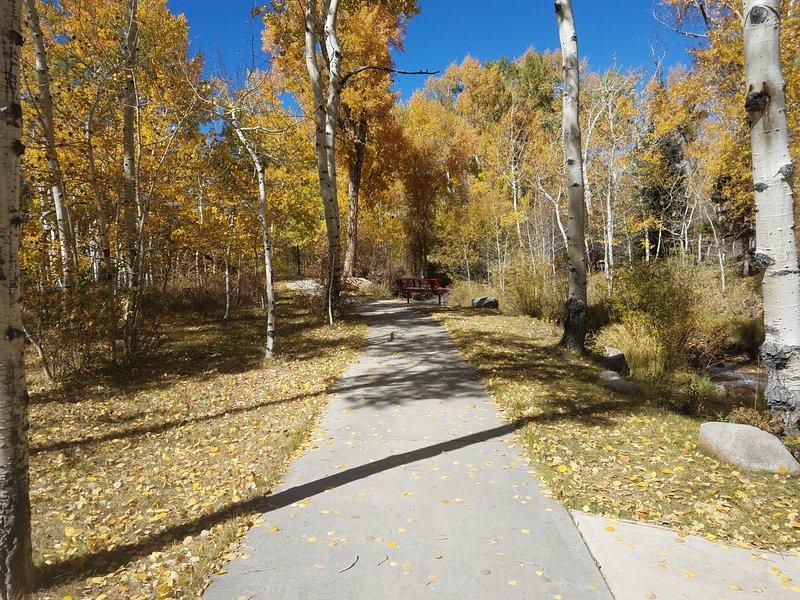 Disfrutar de un paseo en el camino a lo largo del arroyo