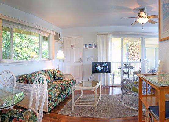 """Divano letto matrimoniale e TV a schermo piatto da 32 """"TV LED comprendono il soggiorno."""