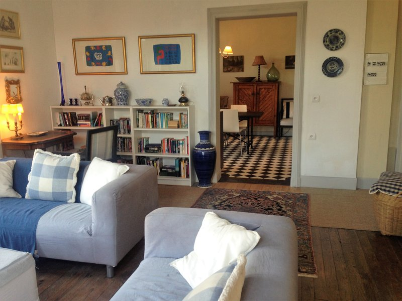 Salies de Bearn stylish townhouse apartment with 2 bedrooms, vacation rental in Osserain-Rivareyte
