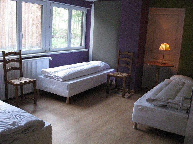 Chambre 'Le Fleckenstein'