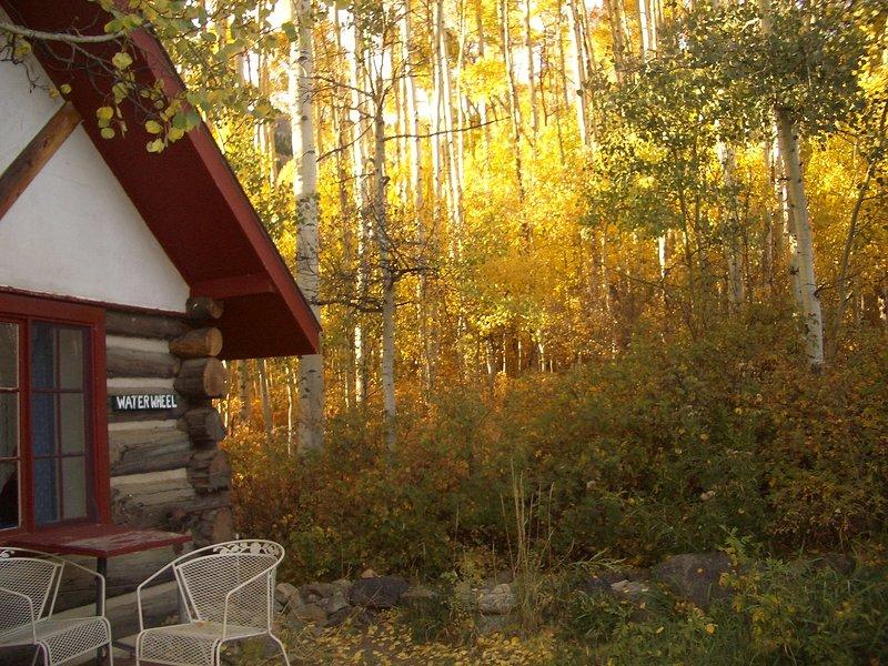 Fall in the aspens create wonderful photos.
