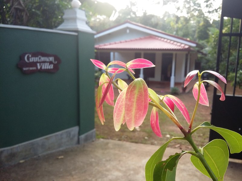 Hikkaduwa Baddegama road,, vacation rental in Hiniduma
