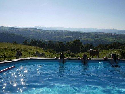 In de Ardèche, caravan, volledige ervaring ongewone soort. Wijn, rit ezel en wagen